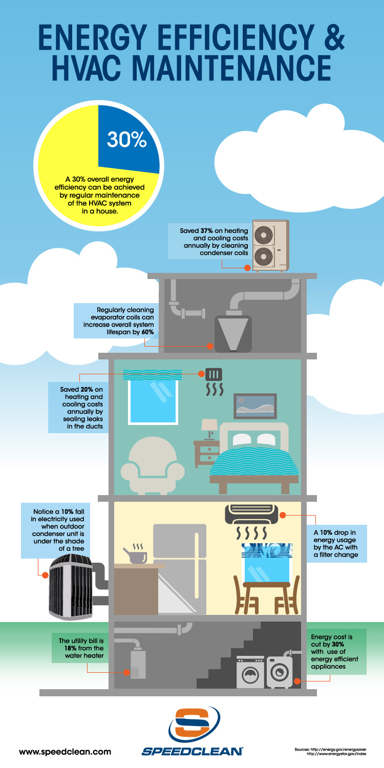 SpeedClean Solutions Infographic