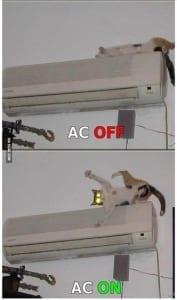 AC Fixed Meme SpeedClean