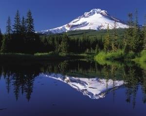 Oregon Efficient State SpeedClean
