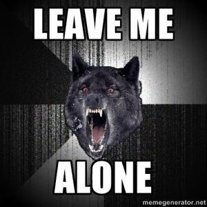 Leave Me Alone Meme SpeedClean