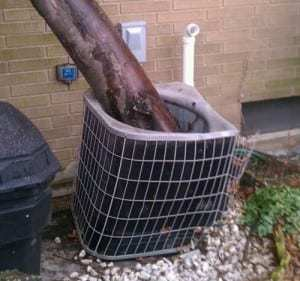 Tree Condenser Unit SpeedClean